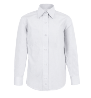 Business Shirt Laundered