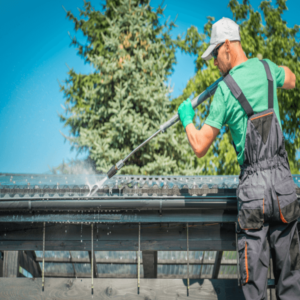 Roof And Gutter Cleaning Service